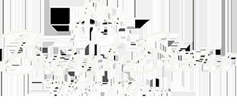 burnt store title web logo